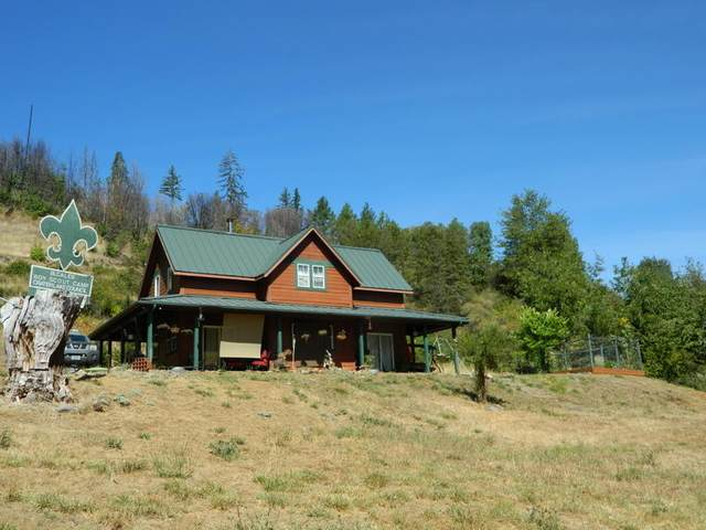 18000 Illinois River Road, Selma, OR 97538 (MLS #220109031) :: The Ladd Group