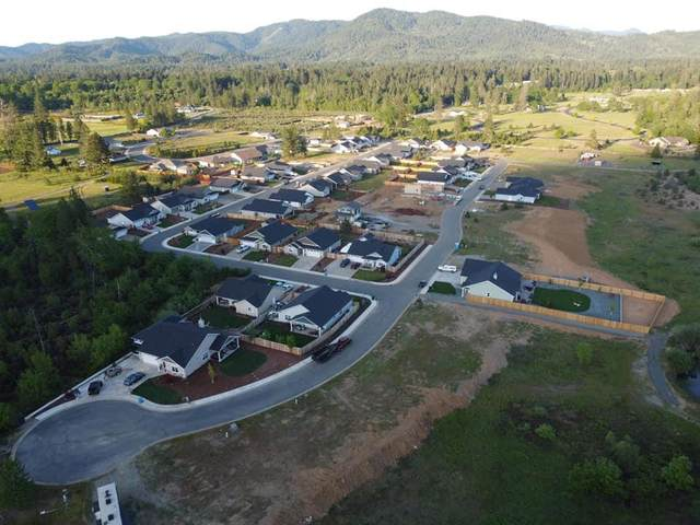 241 Pomeroy View Drive, Cave Junction, OR 97523 (MLS #220109278) :: The Payson Group