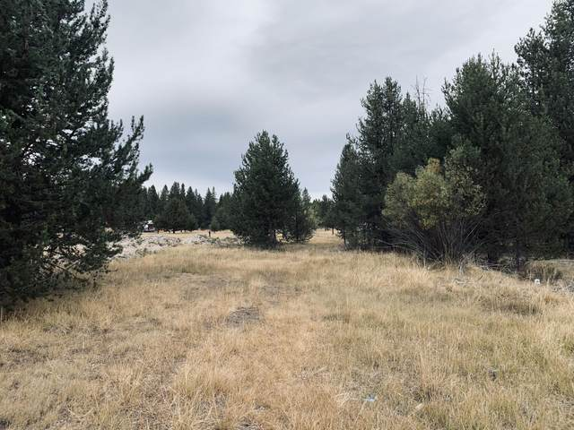 Tx Lt 2100 Holiday Lane, Chemult, OR 97731 (MLS #220109513) :: Central Oregon Home Pros