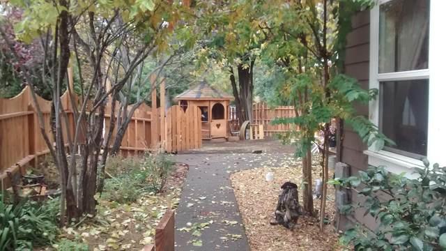 848 Fox Street, Ashland, OR 97520 (MLS #220109582) :: Windermere Central Oregon Real Estate