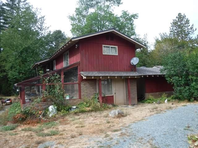 3901 Lower Grave Creek Road, Wolf Creek, OR 97497 (MLS #220109869) :: Vianet Realty