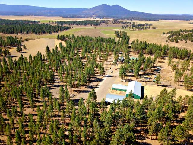 33106 Klamath Forest Drive, Sprague River, OR 97639 (MLS #220109888) :: Rutledge Property Group