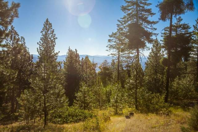 Luce Creek Road, John Day, OR 97845 (MLS #220109938) :: The Ladd Group