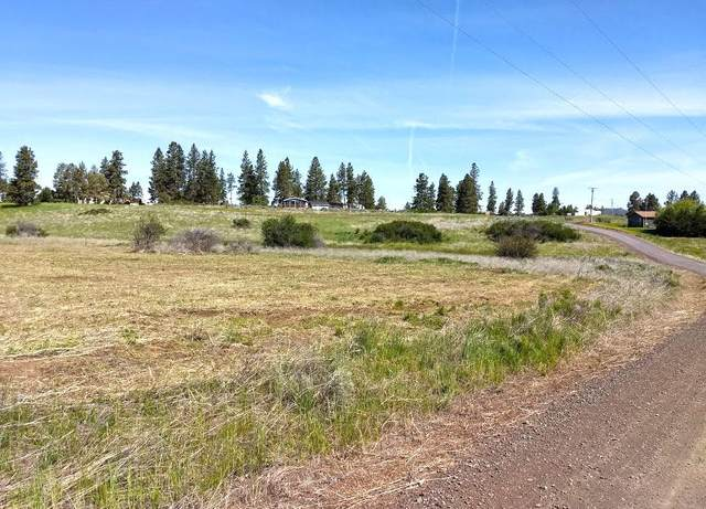Lot 19 Kerry Drive, Chiloquin, OR 97624 (MLS #220110018) :: The Payson Group
