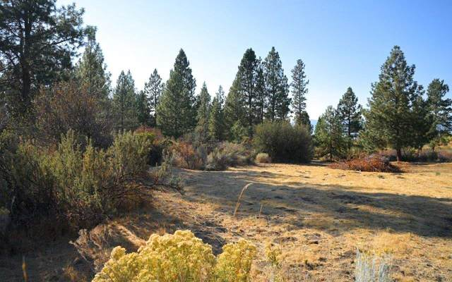 Pine Hollow Lot 11, Chiloquin, OR 97624 (MLS #220110424) :: Berkshire Hathaway HomeServices Northwest Real Estate