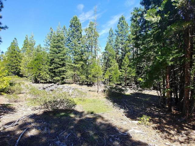 0 6K80 Lot, Sprague River, OR 97639 (MLS #220110485) :: The Payson Group