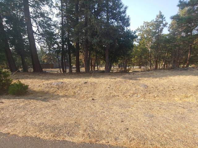 Kestrel Road Lot 23, Klamath Falls, OR 97601 (MLS #220110490) :: The Ladd Group