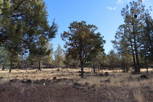 Kestrel Lot 708, Klamath Falls, OR 97601 (MLS #220110570) :: The Ladd Group