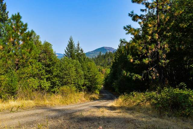 101 W Fork Trail Creek Road, Trail, OR 97541 (MLS #220110622) :: The Payson Group