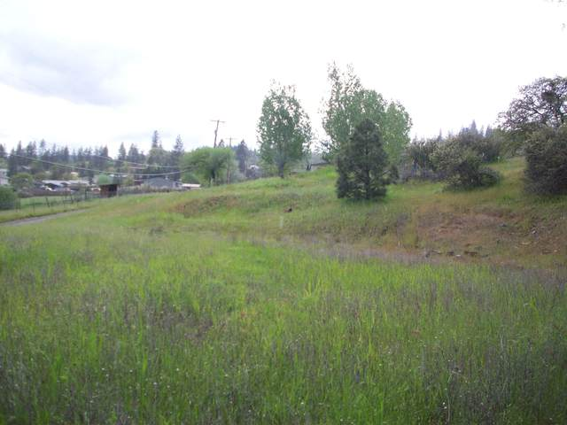 0 Train Lane, Shady Cove, OR 97539 (MLS #220110738) :: The Payson Group