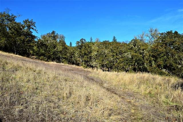 0 NE Newport Street, Roseburg, OR 97470 (MLS #220110764) :: Coldwell Banker Sun Country Realty, Inc.