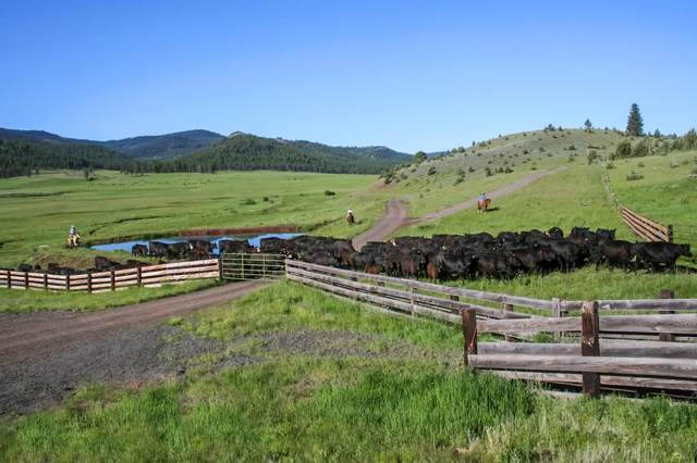 21762 Badger Creek Road, Mitchell, OR 97750 (MLS #220110775) :: Berkshire Hathaway HomeServices Northwest Real Estate