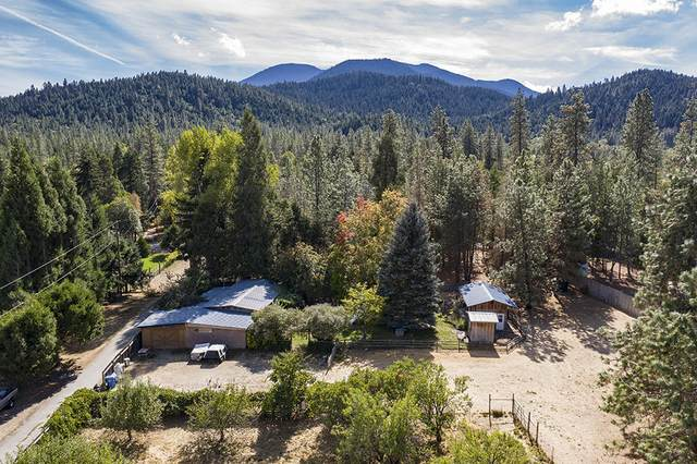 1690 Cedar Flat Road, Williams, OR 97544 (MLS #220110875) :: The Payson Group