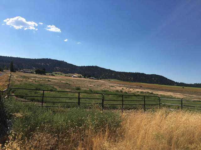 0 Orindale Road, Klamath Falls, OR 97601 (MLS #220110973) :: Top Agents Real Estate Company