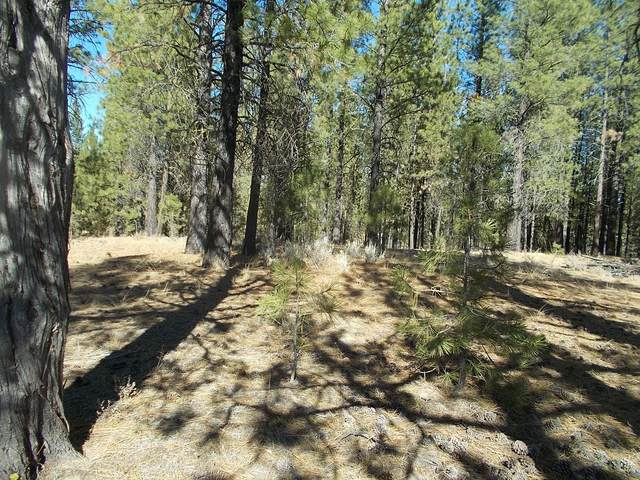 Lot 2100 Bamford Road, Bly, OR 97622 (MLS #220110974) :: The Ladd Group