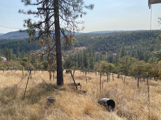 9463 E Antelope Road, Eagle Point, OR 97524 (MLS #220110979) :: The Payson Group