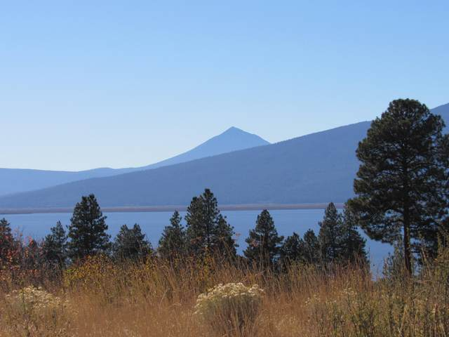 Dawn Loop, Chiloquin, OR 97624 (MLS #220110990) :: The Payson Group