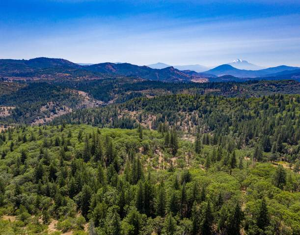 Colestin Road, Ashland, OR 97520 (MLS #220111058) :: Rutledge Property Group
