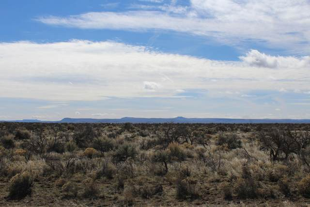 300 Lot T26s, R18e, Wm, Sec3 Lane, Christmas Valley, OR 97641 (MLS #220111068) :: Vianet Realty