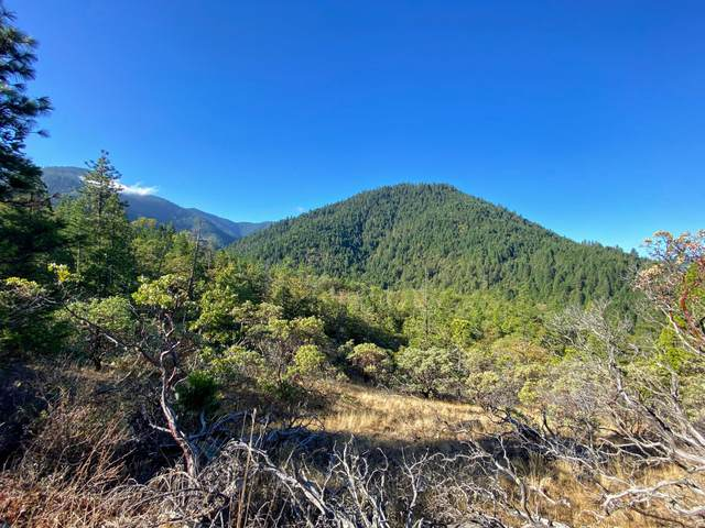 160 Jackson Crek, Wilderville, OR 97543 (MLS #220111115) :: The Payson Group