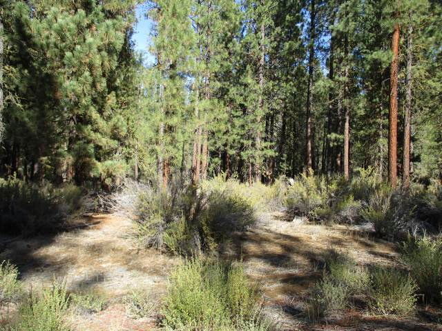 Whitehorse Way, Chiloquin, OR 97624 (MLS #220111132) :: The Payson Group