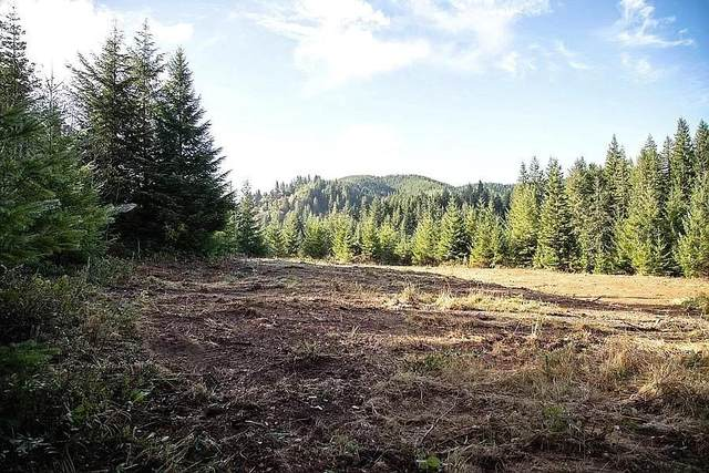 94053 Pleasant Valley Lane, Myrtle Point, OR 97458 (MLS #220111166) :: The Payson Group