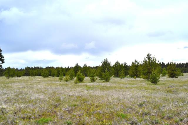 Hwy 97 Lot 700, Chiloquin, OR 97624 (MLS #220111254) :: Rutledge Property Group
