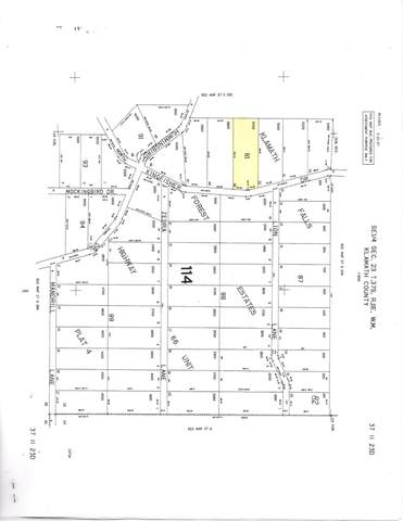 Lot 49 Kingfisher Drive, Bonanza, OR 97623 (MLS #220111255) :: Rutledge Property Group