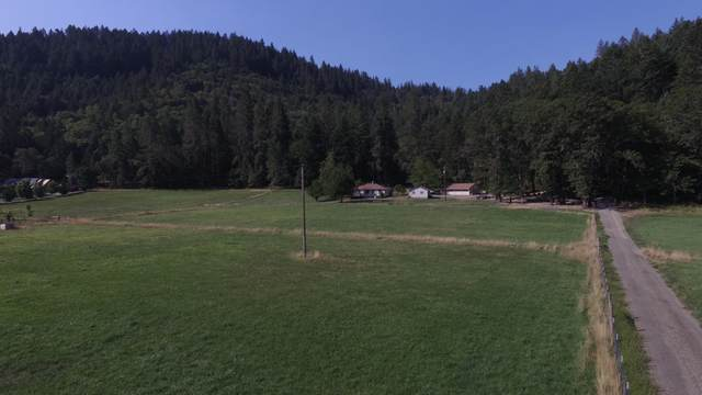 8800 Williams Highway, Grants Pass, OR 97527 (MLS #220111265) :: The Payson Group