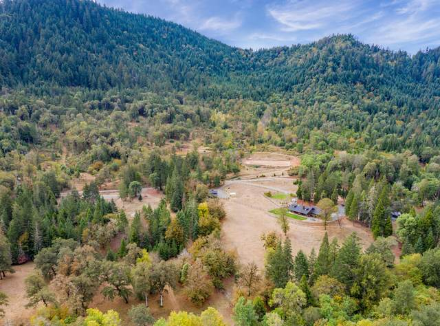 316 Beecher Road, Wolf Creek, OR 97497 (MLS #220111338) :: The Ladd Group