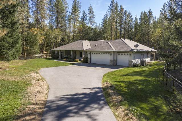 567 Carter Drive, Grants Pass, OR 97526 (MLS #220111394) :: The Payson Group