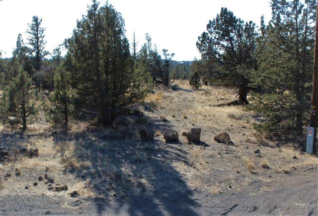 Lot 12 SW Fox Court, Terrebonne, OR 97760 (MLS #220111483) :: The Riley Group