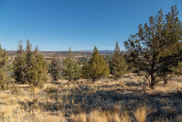 5300-TL Sagebrush Drive, Madras, OR 97741 (MLS #220111568) :: The Ladd Group