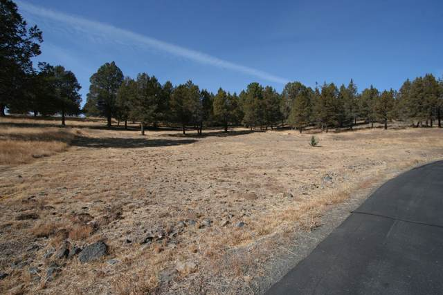 Lot 1201 Murrelett, Klamath Falls, OR 97601 (MLS #220111667) :: Central Oregon Home Pros
