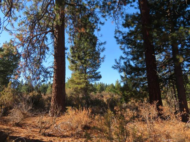 Pine Ridge Loop Lot 900, Chiloquin, OR 97624 (MLS #220111830) :: The Ladd Group