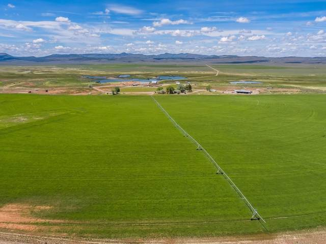 55552 S Gi Road, Prineville, OR 97754 (MLS #220112156) :: The Ladd Group