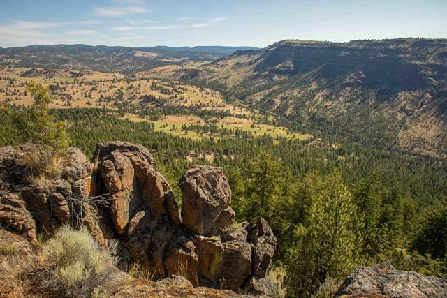 Rowe Creek Road, Fossil, OR 97830 (MLS #220112438) :: Fred Real Estate Group of Central Oregon