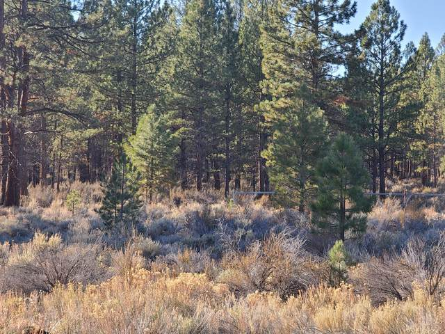 lot 15 Pow Wow Lane, Sprague River, OR 97639 (MLS #220112918) :: Top Agents Real Estate Company