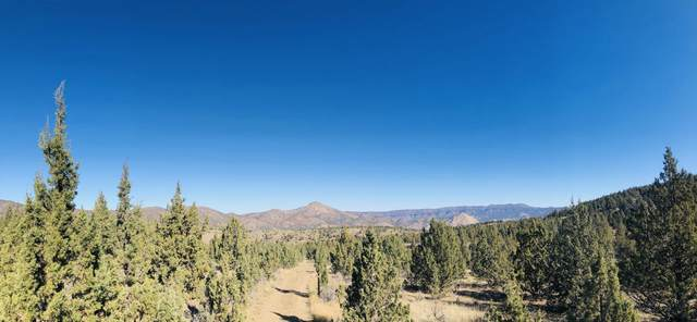 39.45 AC Lost Coyote Lane, Mitchell, OR 97750 (MLS #220113191) :: Premiere Property Group, LLC