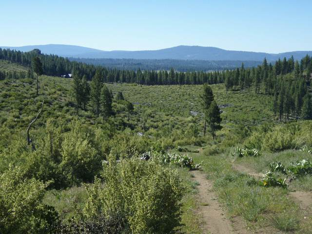 Lot 16 Pioneer Ln, Chiloquin, OR 97624 (MLS #220114200) :: Stellar Realty Northwest