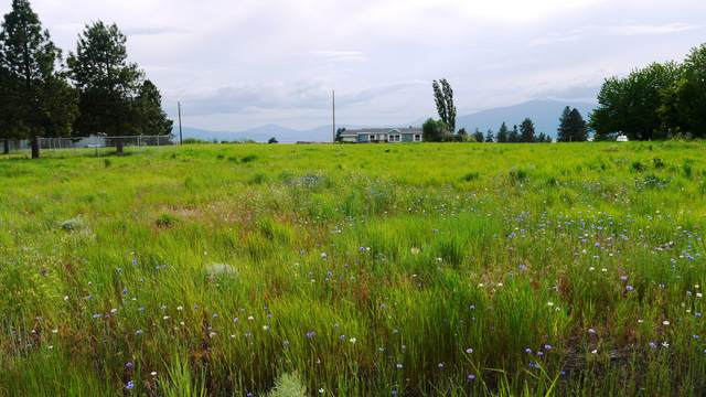 Lot 50 Cloutier Drive, Chiloquin, OR 97624 (MLS #220114213) :: Stellar Realty Northwest