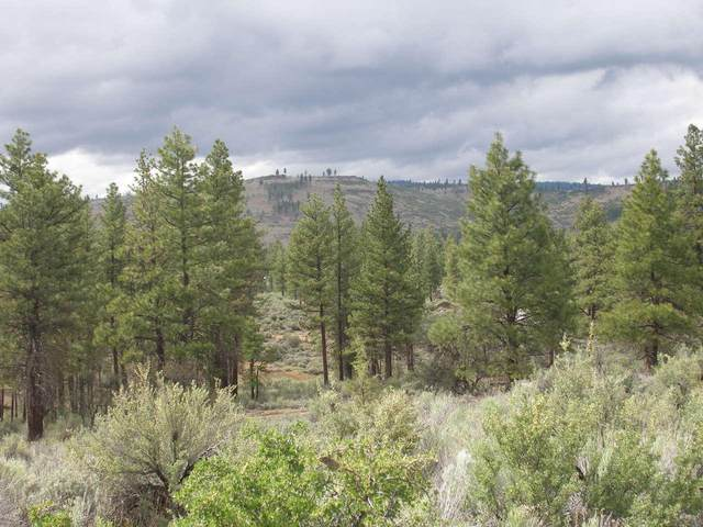 Canadian Honker Lot 15, Chiloquin, OR 97624 (MLS #220114265) :: Stellar Realty Northwest