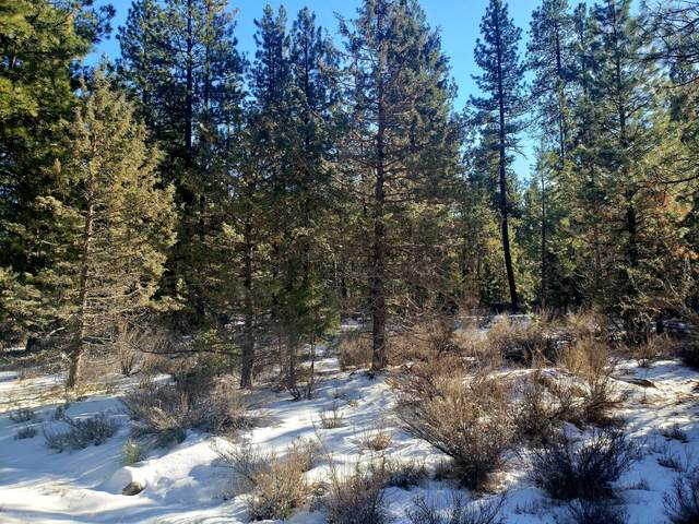 Zebra Lane Lot 4, Bonanza, OR 97623 (MLS #220114282) :: Stellar Realty Northwest