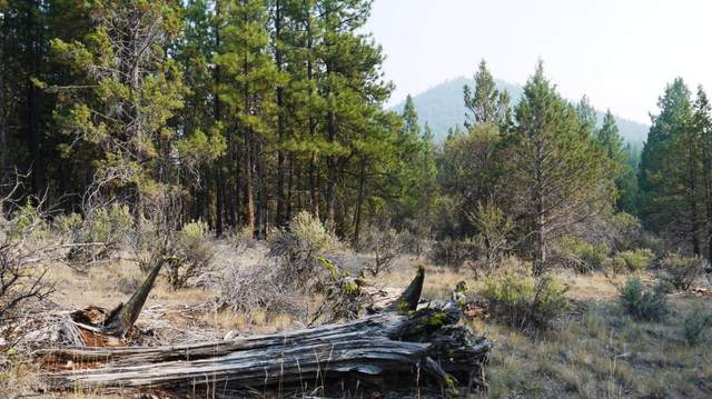 Packsaddle Lot 6, Beatty, OR 97621 (MLS #220114302) :: Premiere Property Group, LLC