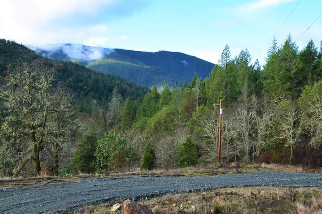 5572 Jump Off Joe Ck, Grants Pass, OR 97526 (MLS #220114312) :: The Payson Group