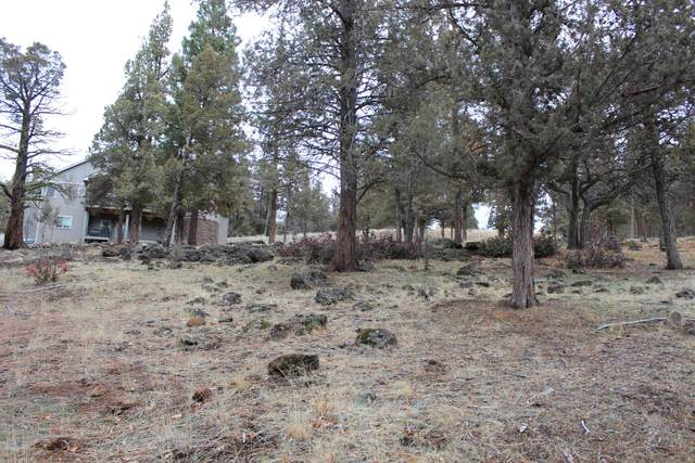 Coopers Hawk #267, Klamath Falls, OR 97601 (MLS #220114529) :: The Payson Group