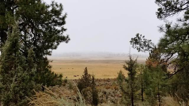 0 0 Sprague River Rd 1100, Sprague River, OR 97639 (MLS #220114537) :: The Payson Group