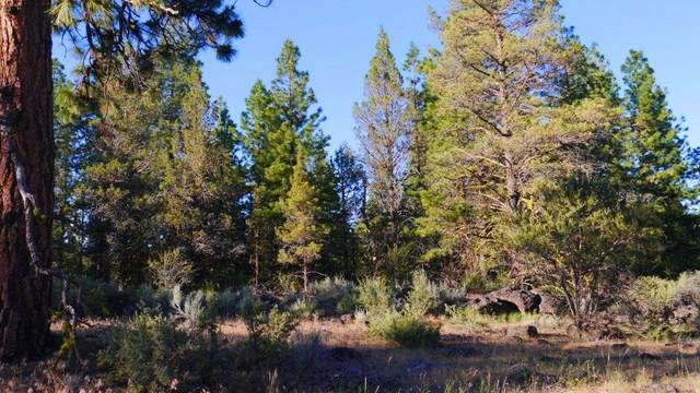 Yak Ln Lot 19, Bonanza, OR 97623 (MLS #220114600) :: Premiere Property Group, LLC