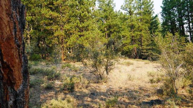 0 Vireo Dr Lot 69, 70, 71, Bonanza, OR 97623 (MLS #220114671) :: Premiere Property Group, LLC