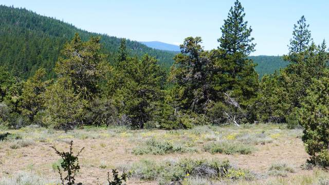 Beaver Ln Lot 39, Bonanza, OR 97623 (MLS #220114678) :: Premiere Property Group, LLC